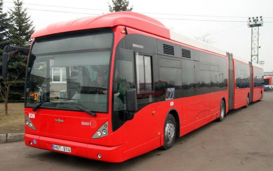 В Каунасе — самый длинный в Балтии автобус