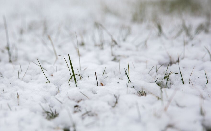 Погода: весна по-прежнему будет холодной, выпадет снег