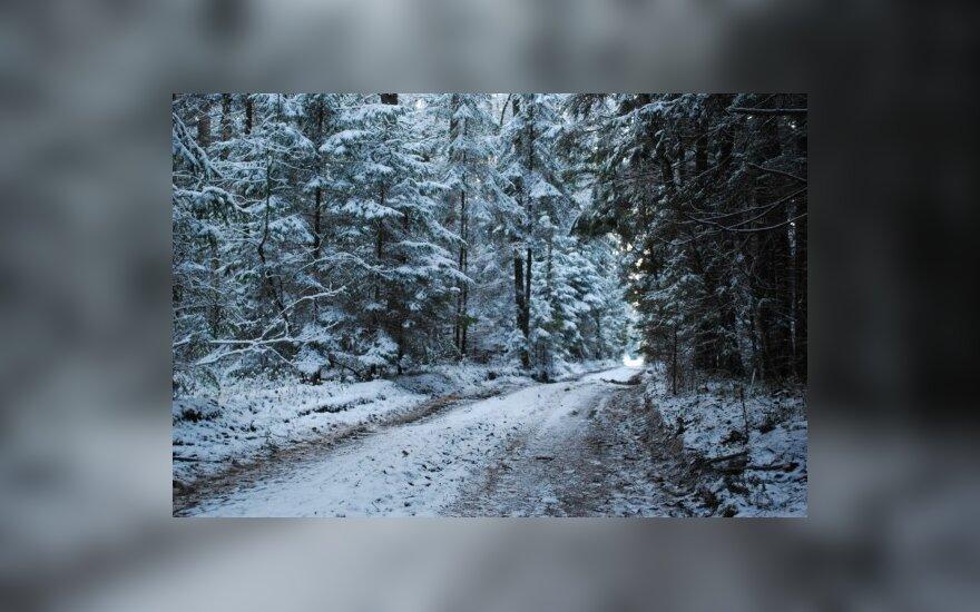 Дороги покрыты мокрым снегом