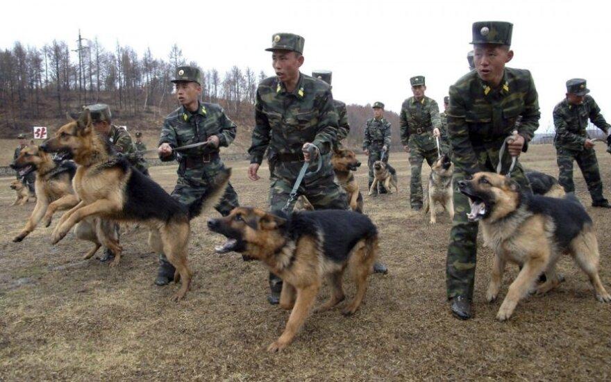 Šiaurės Korėjos kariai ruošdamiesi mūšiams dresuoja šunis