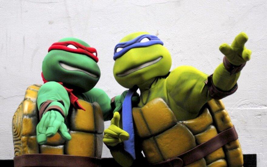 Kolejne żółwie mutanty poznani