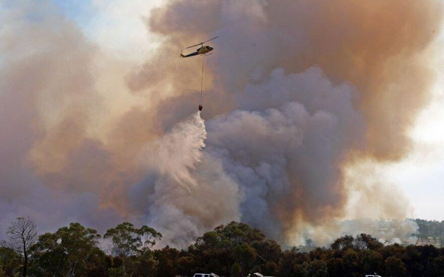 Австралия: при жаре в +40 юноша два месяца провел в лесу без еды