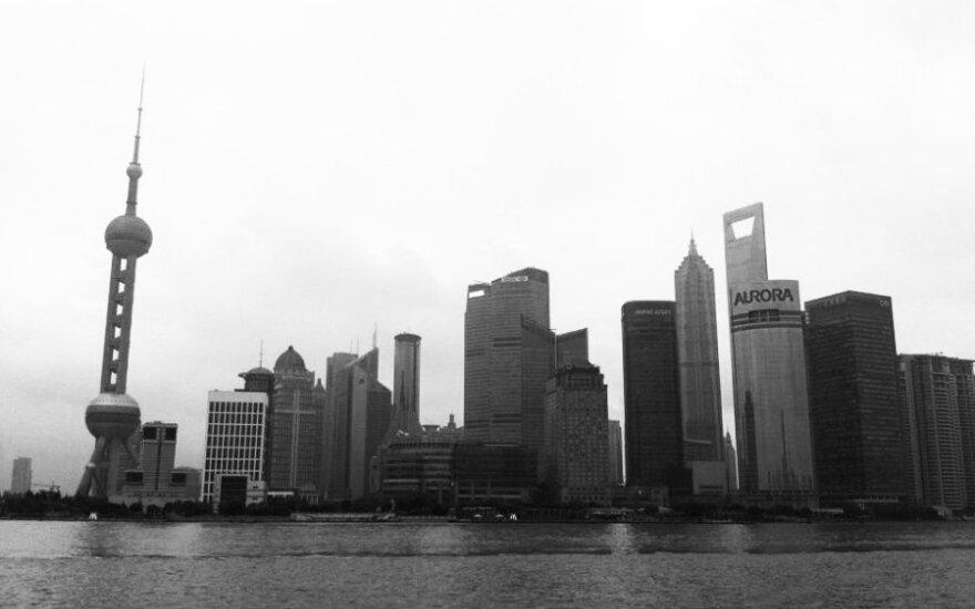 В центр Шанхая приплыли две тысячи мертвых свиней