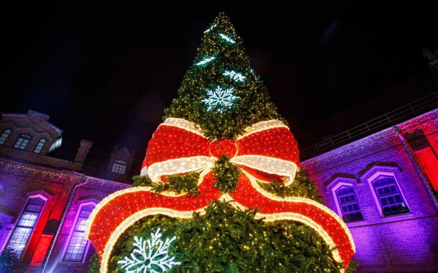 В Литве зажгли огни на первой рождественской елке