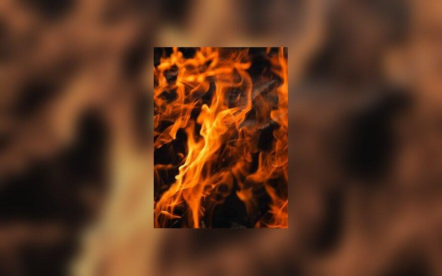 Рабочие сожгли работодателя из-за слухов об увольнении