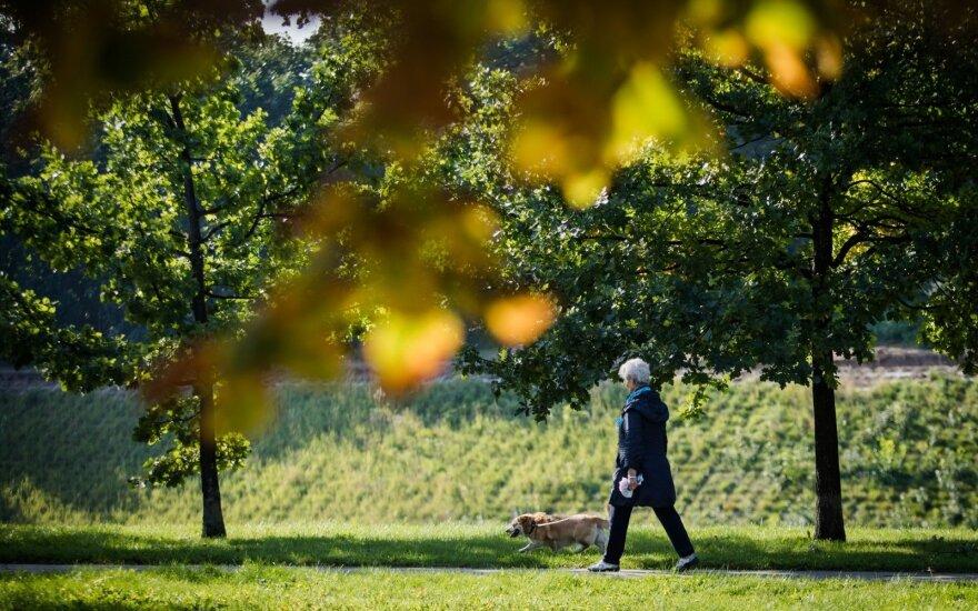 Грядут перемены: скоро в Литве потеплеет до 17 градусов