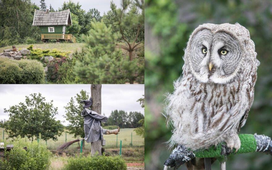 Необычный парк в Литве: ждет мощный заряд положительных эмоций