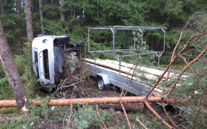 Съехавший с дороги Ford Tourneo застрял между деревьями