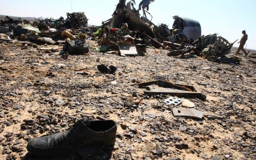 Эксперты раскрыли схему унесшего жизни 224 россиян теракта над Синаем