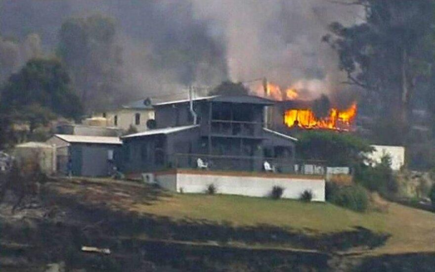Лесные пожары на Тасмании: огонь выгнал людей на пляжи