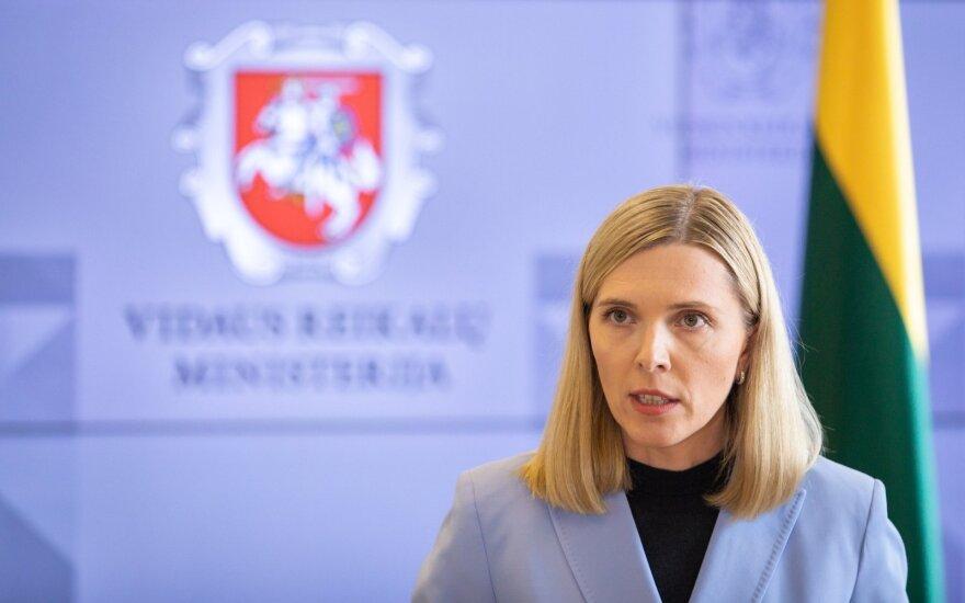 Глава МВД Литвы предлагает ввести чрезвычайное положение на границе с Беларусью