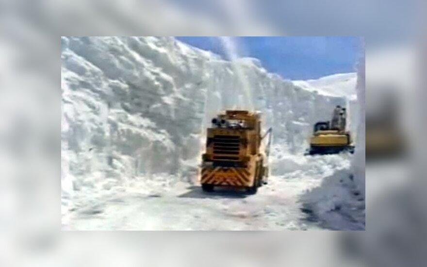 Sniegas Japonijoje