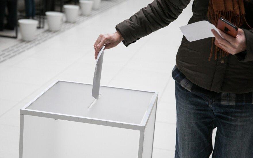 Референдумы и президентские выборы в Литве: важнейшие цифры