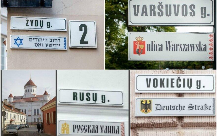 """<strong style=""""color: #ff0000;"""">Выборы 2016</strong>: что предлагают и обещают партии национальным общинам Литвы?"""