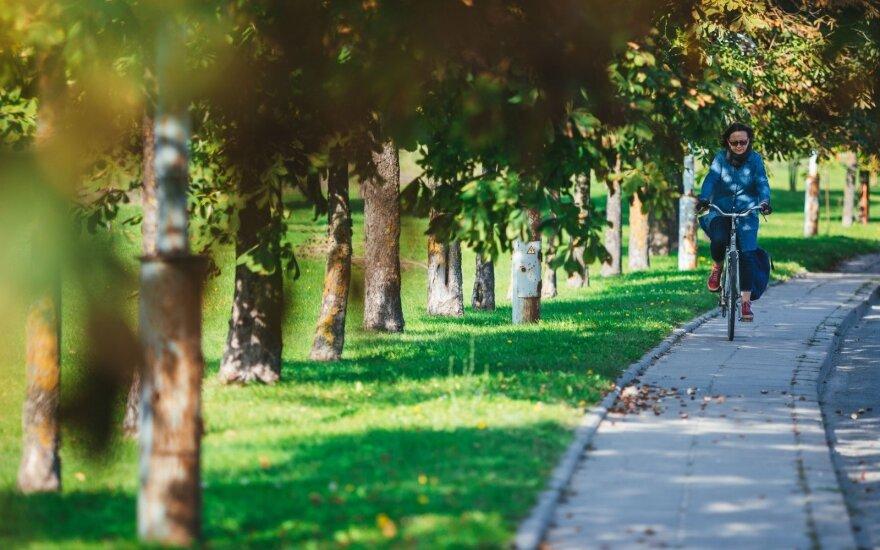 Погода: с опозданием в Литву идет бабье лето