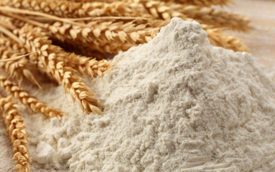 Вайткус: в будущем мы ждем роста грузов зерна