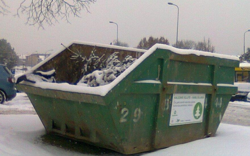 Tokie konteineriai eglutėms stovi Vilniuje, Klaipėdoje, dar keliolikoje mažesnių Lietuvos miestų