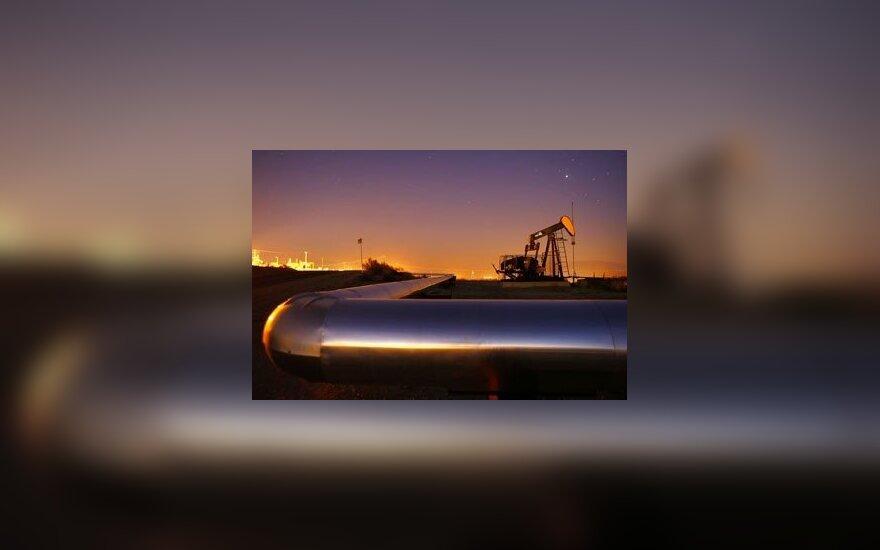 Россия расследует экспорт нефтепродуктов из Беларуси