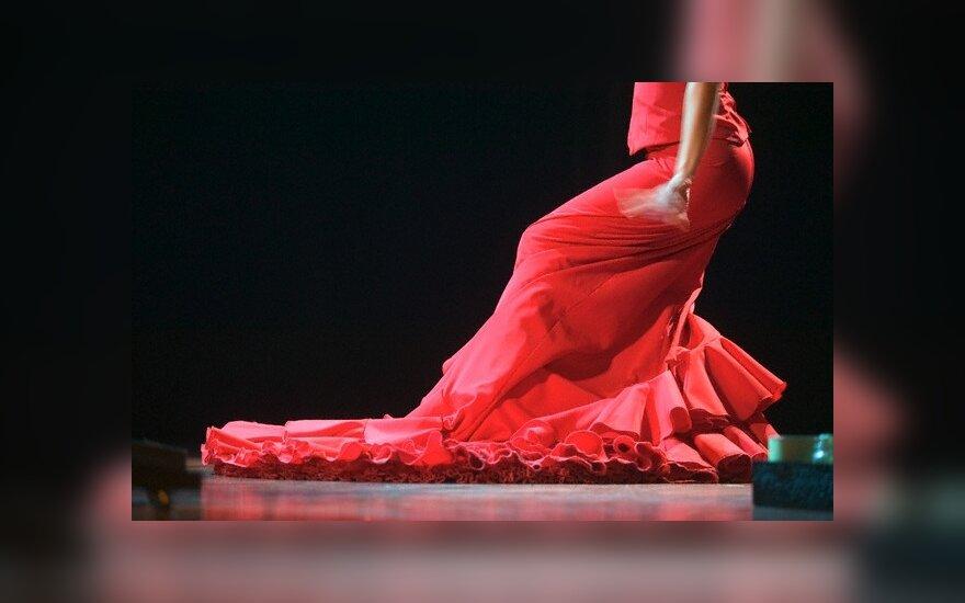 В Вильнюсе - новогодняя фиеста фламенко