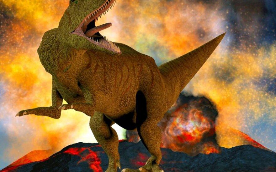 Dinozaurų žūtį sukėlęs ugnikalnis