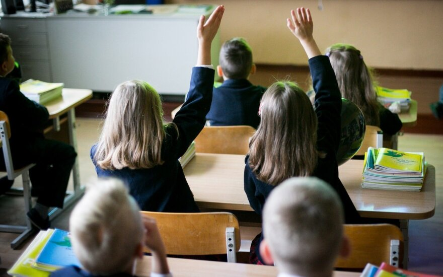 Депутат предлагает обязать международные школы учить детей истории Литвы