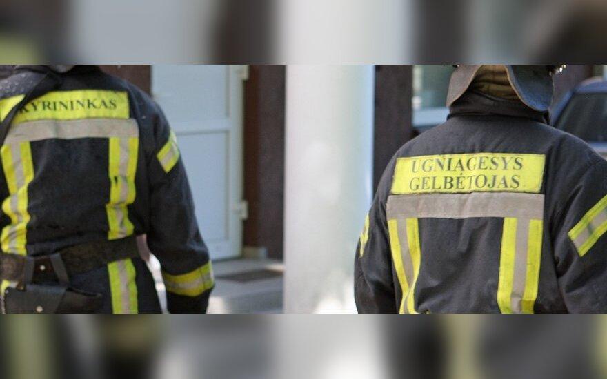 Новогодний сюрприз: пропавший со двора Audi A6 найден в водоеме