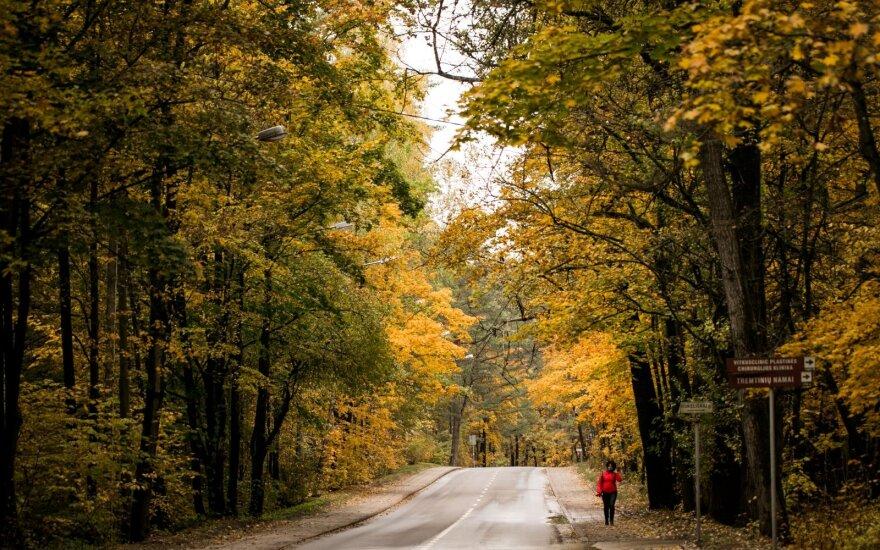 В Литве прогнозируют потепление, вместо снега пойдет дождь