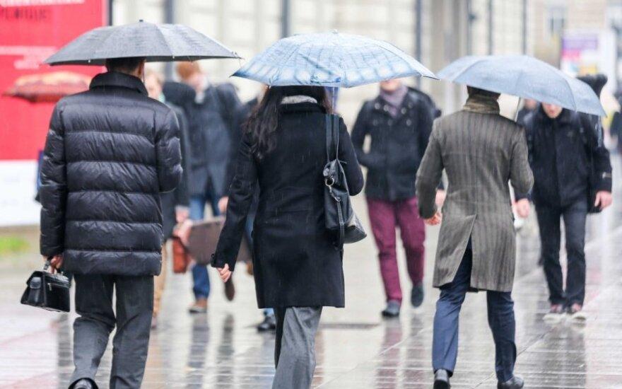 Прогноз: в предрождественскую неделю будут дожди