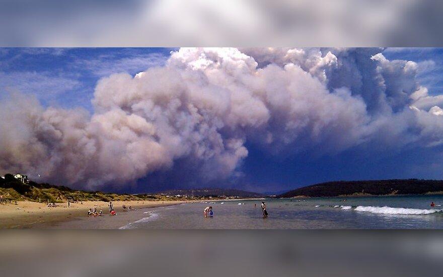 В Австралии пожары приобретают характер катастрофы