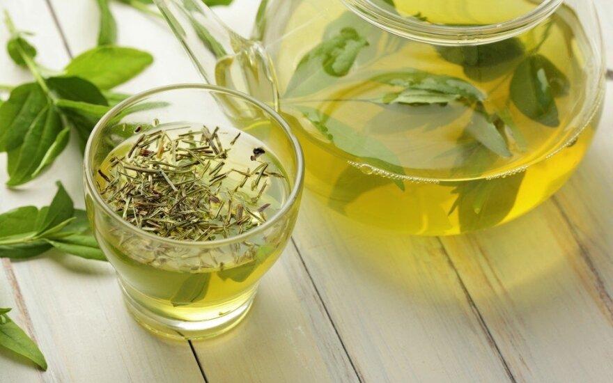 Ученые выяснили, как зеленый чай убивает рак