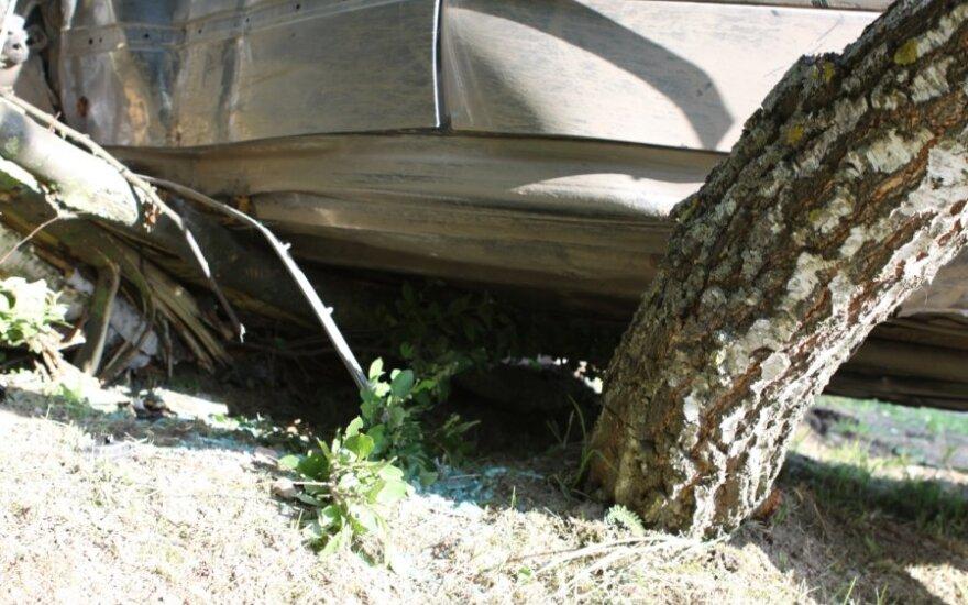 Пьяный водитель врезался в дерево, пострадала пассажирка
