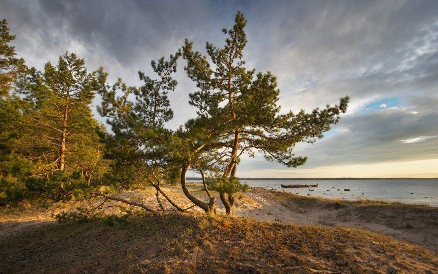 В воздухе Эстонии и Финляндии обнаружен радиоактивный йод