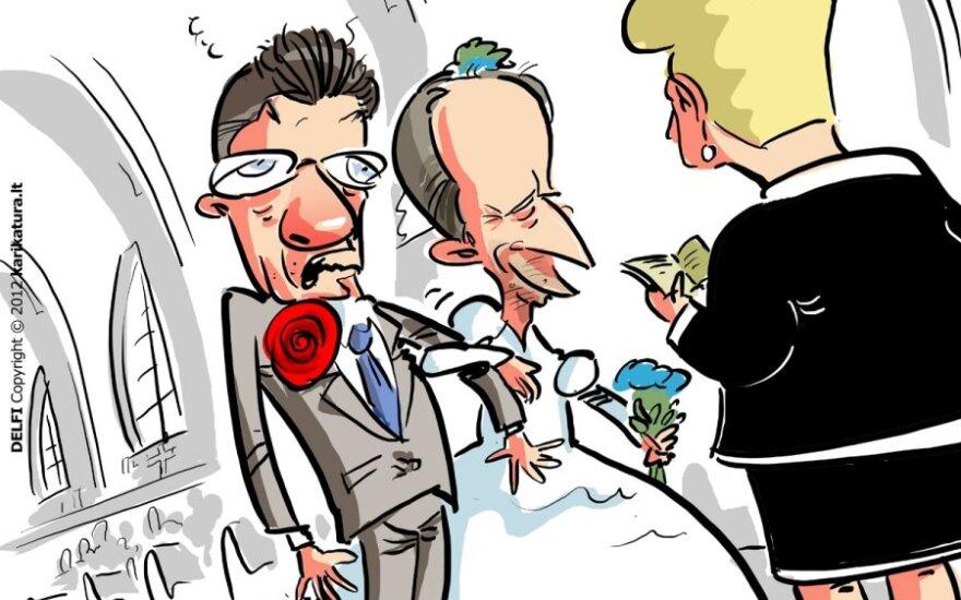 Dalia Grybauskaitė, Andrius Kubilius, Algirdas Butkevičius, Vyriausybė, karikatūra