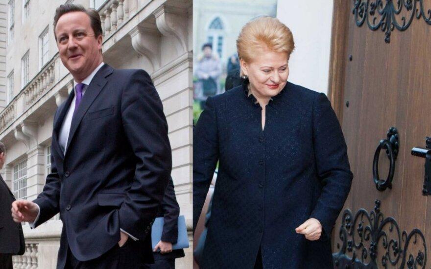 Grybauskaitė: Litwa będzie bardziej bezpieczna w zintegrowanej Europie