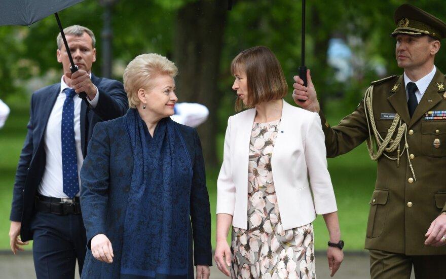 Президент Литвы отказалась от оценки визита президента Эстонии в Россию