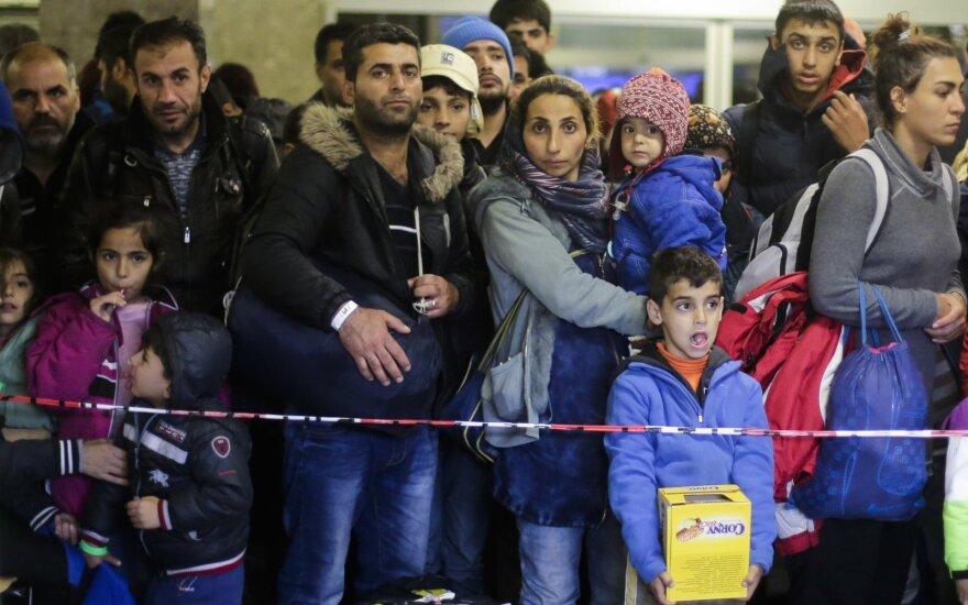Армия Германии научит сирийских беженцев строительному делу