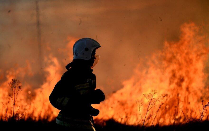 ВИДЕО: Стена огня из Приморья угрожала китайскому городу