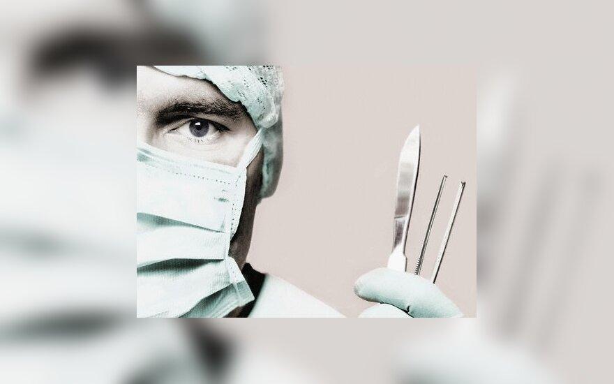 Внутренние органы уже можно увидеть без скальпеля и рентгена