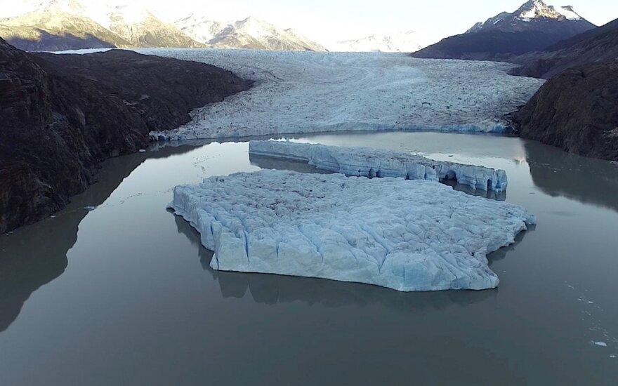 РФ заблокировала создание трех заповедников в районе Антарктики