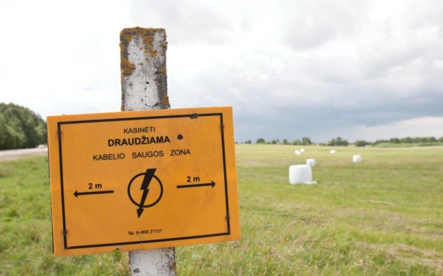 Эстония обвиняет Латвию и Литву в высоких ценах на электричество