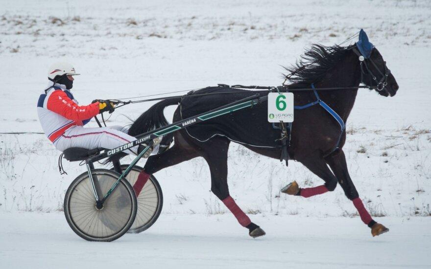 В Дусетай проходят конные скачки на озере Сартай