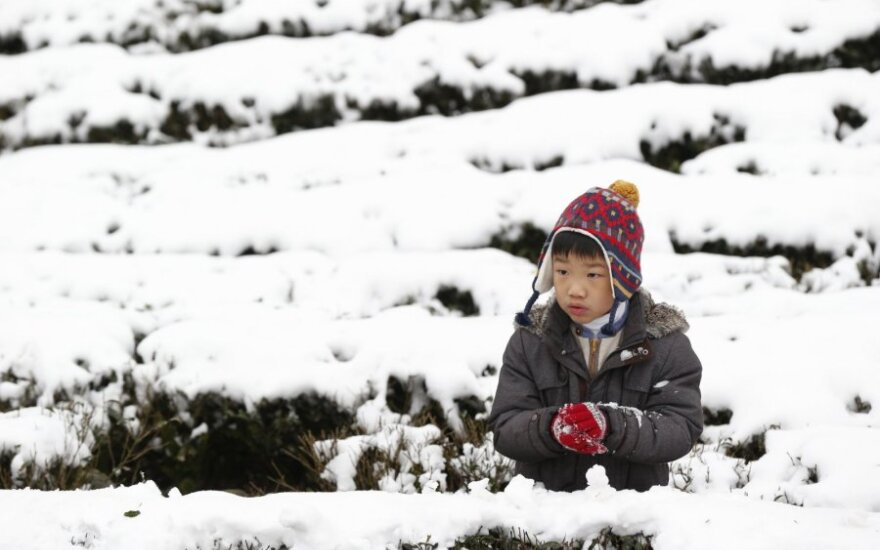 На Тайване из-за аномальных холодов погибли 50 человек