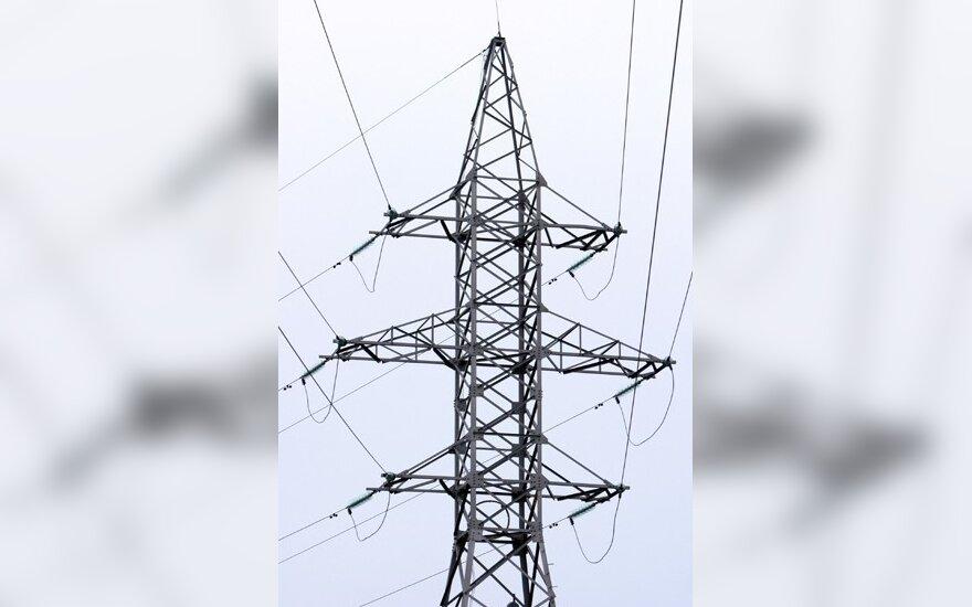 Больше всего электроэнергии Литва покупает у Латвии