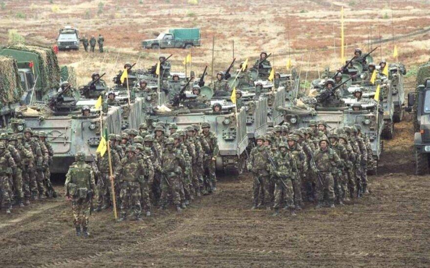 Сейм Литвы установил структуру вооруженных сил на следующий год