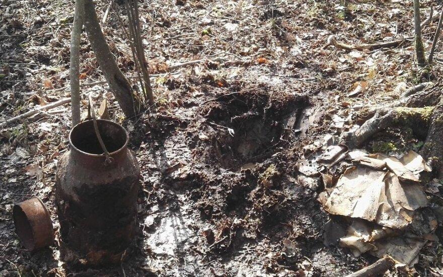 Таинственная находка в лесу: вероятно, найдены письма партизан