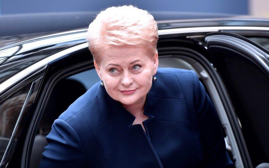 Литва поддерживает инициативу ЕС о честных выборах ЕП