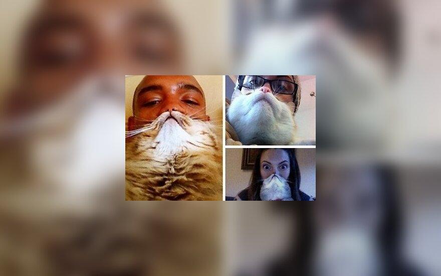 Новая интернет-мода: борода из кота