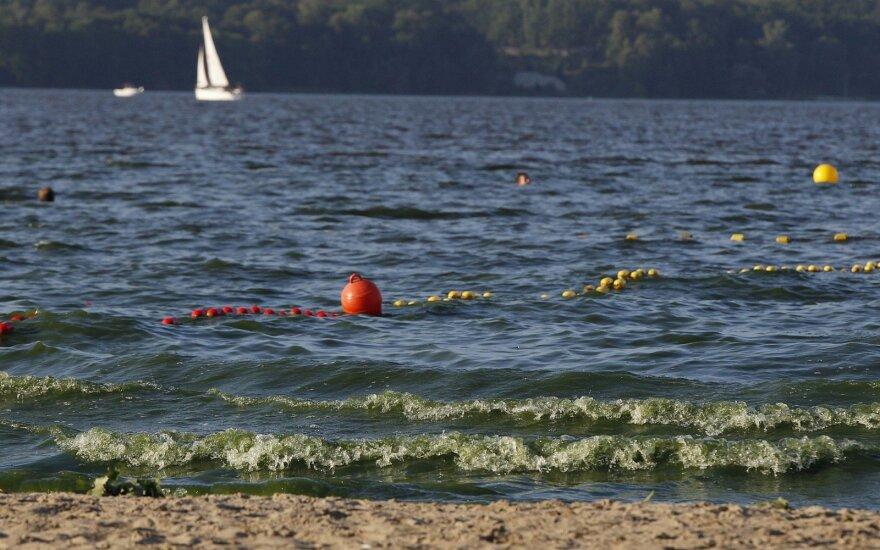 Из-за аномальной жары страны Балтии атакуют токсичные водоросли