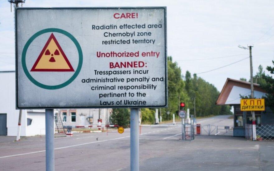 Яценюк хочет создать в Чернобыльской зоне радиологический заповедник
