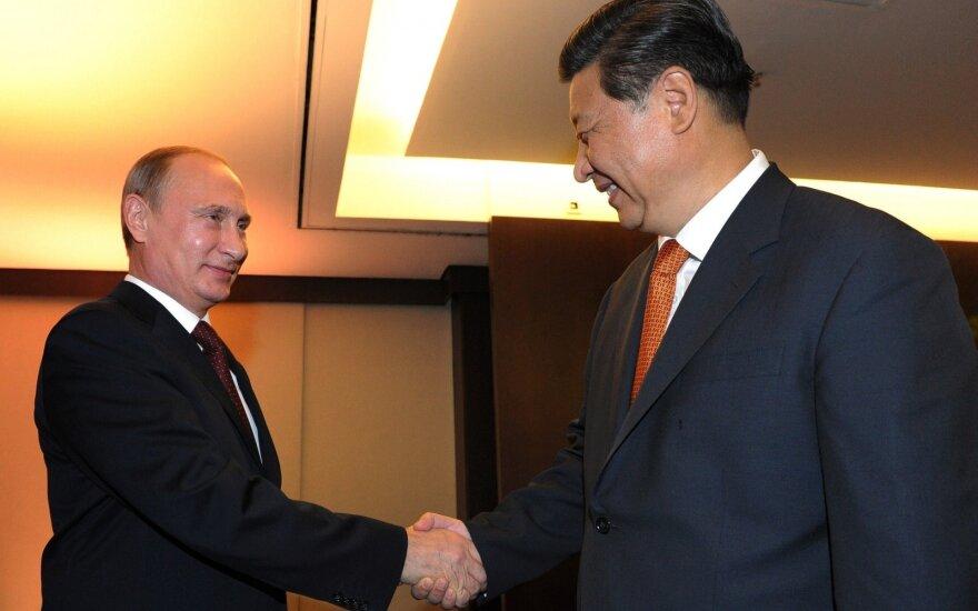 BRICS susitikimas Brazilijoje: V. Putinas ir Xi Jinping